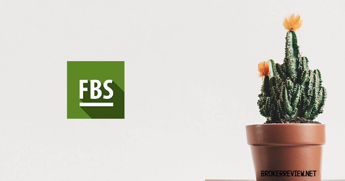 Payment system of FBS review